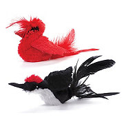 Pet Zone Realbird Play N Squeak
