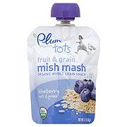Plum Organics Tots Blueberry Oats & Quinoa Fruit & Grain Mish Mash Snack