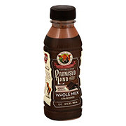 Promised Land Midnight Chocolate Whole Milk