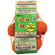 Pumpkin Patch Pals Miniature Pumpkin Painting Activity Kit