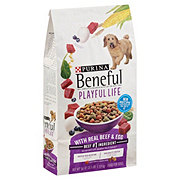 Purina Beneful Playful Life Dry Dog Food
