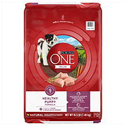 Purina ONE Healthy Puppy Formula Dog Food