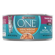 Purina ONE Smartblend Tender Salmon Recipe Cat Food