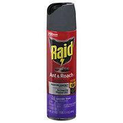 Raid Ant & Roach Killer 26  Lavender Scent