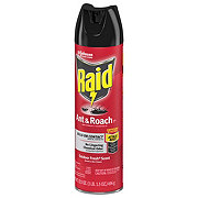 Raid Ant & Roach Killer 26, Outdoor Fresh Scent