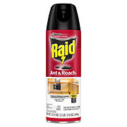 Raid Ant & Roach Killer 26 Unscented