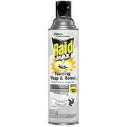 Raid Max Foaming Wasp and Hornet Killer