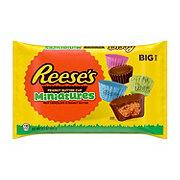 Reese's Peanut Butter Cup Miniatures Big Bag