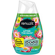 Renuzit After the Rain Simply Refreshed Collection Gel Air Freshener