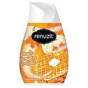 Renuzit Maple Pumpkin Delight Gel Air Freshener