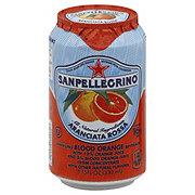 San Pellegrino Sparkling Blood Orange Beverage