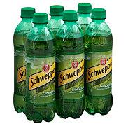 Schweppes Ginger Ale .5 L Bottles