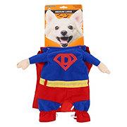 SimplyDog Super Dog Costume