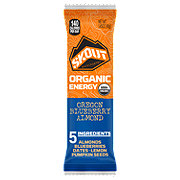 Skout Oregon Blueberry Almond Organic Energy Bar