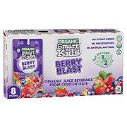 Smart Kids Organic Berry Blast Juice Beverage 6 oz Pouches