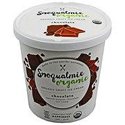 Snoqualmie Organic Chocolate Ice Cream