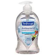 Softsoap Antibacterial Hand Soap White Tea & Berry Fusion