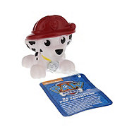 Spin Master Paw Patrol Assorted Pup Squirters