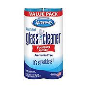 Sprayway Worlds Best Glass Cleaner