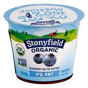 Stonyfield Farm Non-Fat Yogurt Blueberry