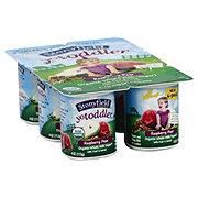 Stonyfield YoToddler Whole Milk Raspberry Pear Yogurt