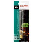 Sylvania Clear 40 Watt T6.5 Indoor Light Bulb