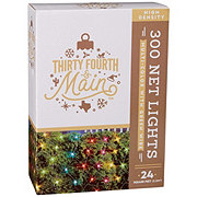 Thirty Fourth & Main 300 High Density Multicolored Indoor/Outdoor Net Lite