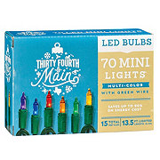 Thirty Fourth & Main 70 Multicolor LED Mini-Style Lights
