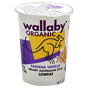 Wallaby Organic Banana Vanilla Low Fat Yogurt