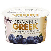 Wallaby Organic Lowfat Greek Yogurt with Blueberries