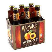 Wasatch Brewery Apricot Hefeweizen 6 PK Bottles